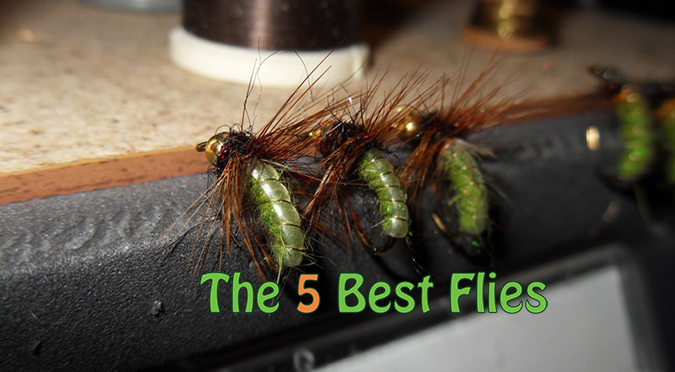 Choose 5 Flies
