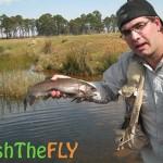 Rainbow Trout Fish The Fly