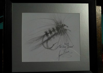 RAB Fly Sketch