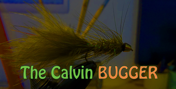 What Is The Calvin Bugger