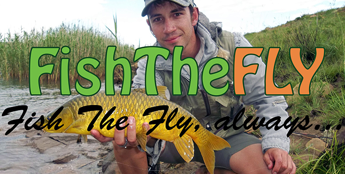 Top 10 Yellowfish Flies