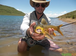 Smallmouth Yellowfish Caught On Dry Fly