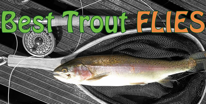 Top 10 trout flies bing images for Best trout fishing in colorado