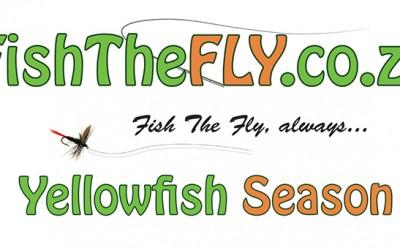 Yellowfish Season
