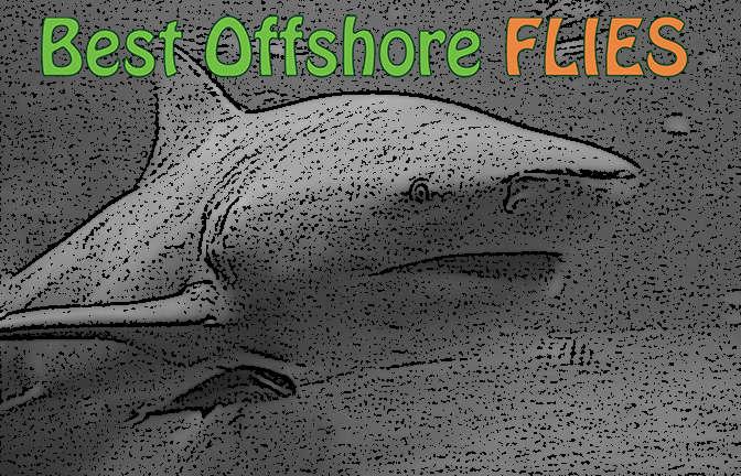 Best Offshore Flies