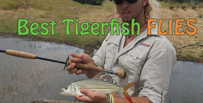 Best Flies For Tigerfish