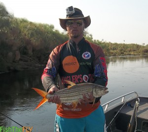 Botswana Tigerfish Caught On Fly