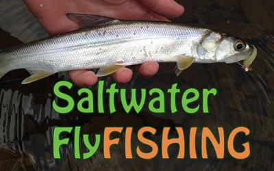 Saltwater Fly Fishing 101