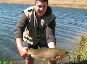 3kg Male Cock Rainbow Trout