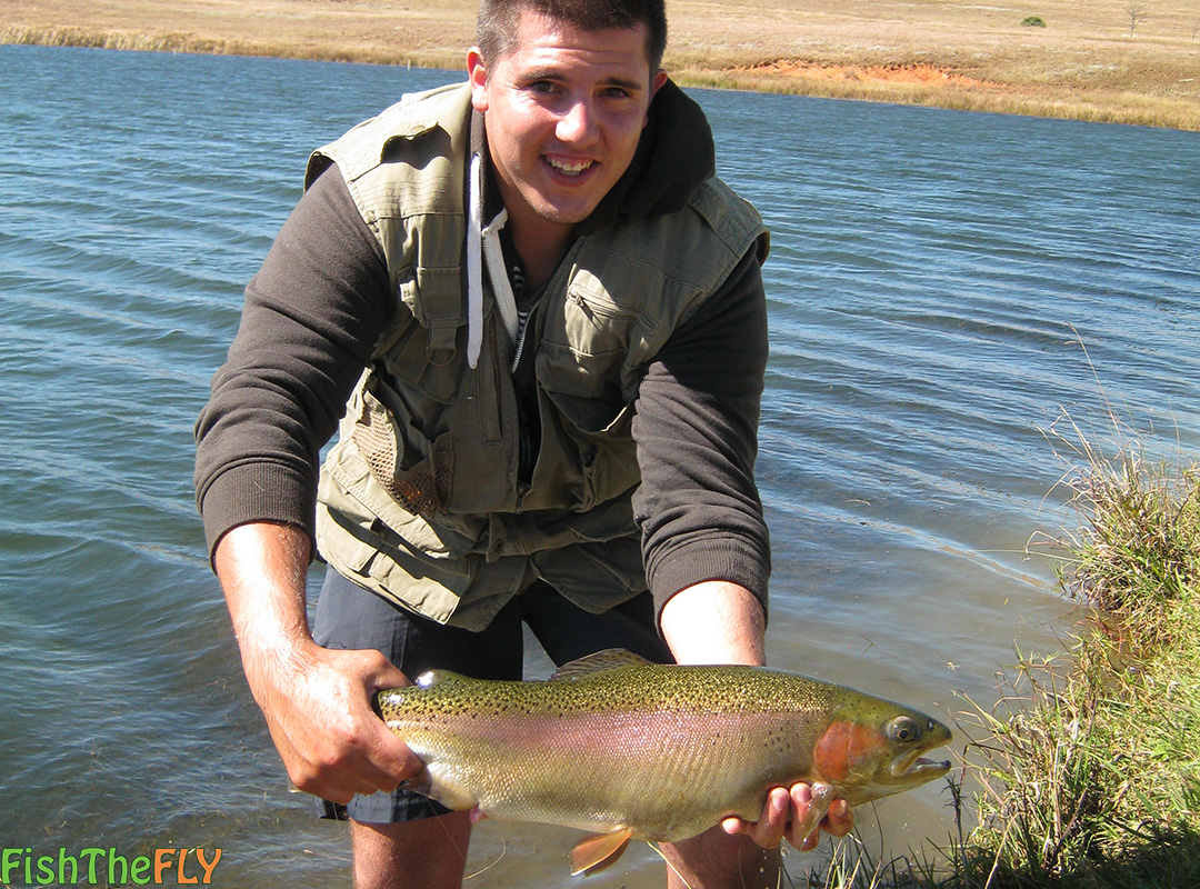 Fly fishing for rainbow trout on fly in south africa for How to fish for rainbow trout