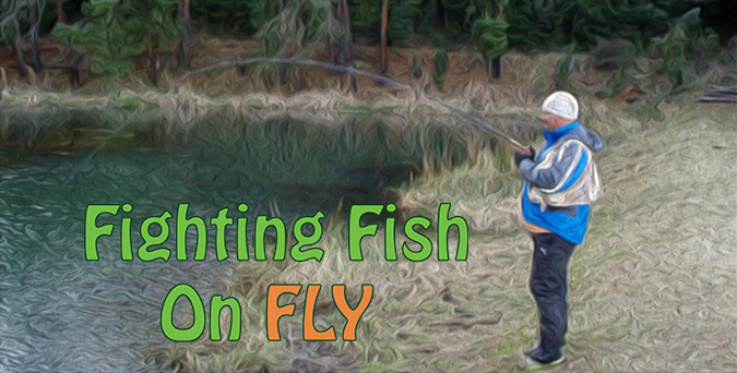 Fighting Fish On Fly