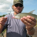 Lake Jozini Tigerfish On Fly