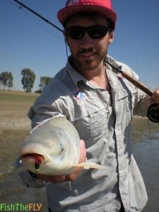 Sean Bisset Fly Fishing For Moggel