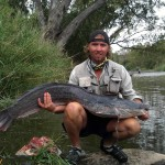 Sharptooth Catfish On Fly