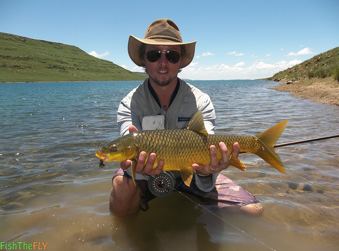 Fly fishing for the smallmouth yellowfish on fly for Fishing in orange county