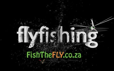 39 Must Catch Fish On Fly In The World | Fly Fishing Infographic