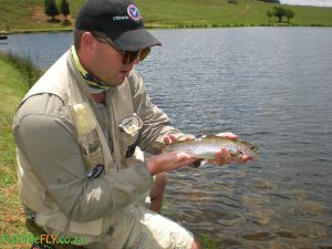 Millstream Small Trout
