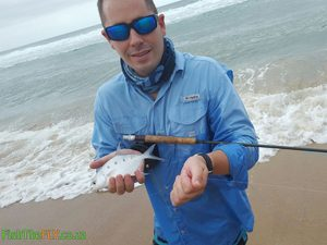 Largespot Pompano or Wave Garrick caught on fly