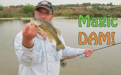 Magic Dam Bass Fly Fishing