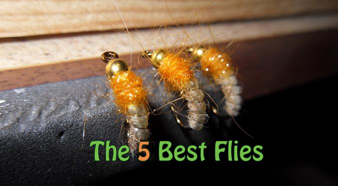 Choosing 5 Flies