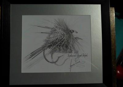 DDD Fly Sketch