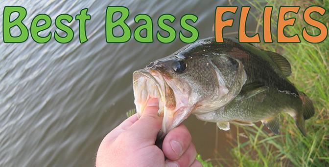 Best Flies For Bass