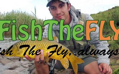 Top 10 Yellowfish Flies