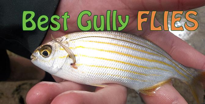 Best Gully Flies