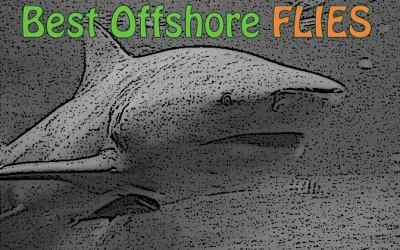 Best Offshore Flies