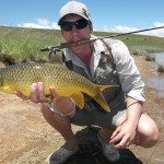 Smallmouth Yellowfish On Dry Fly