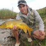 Sterkfontein Dam Smallmouth Yellowfish