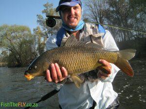 4 kilogram Common Carp